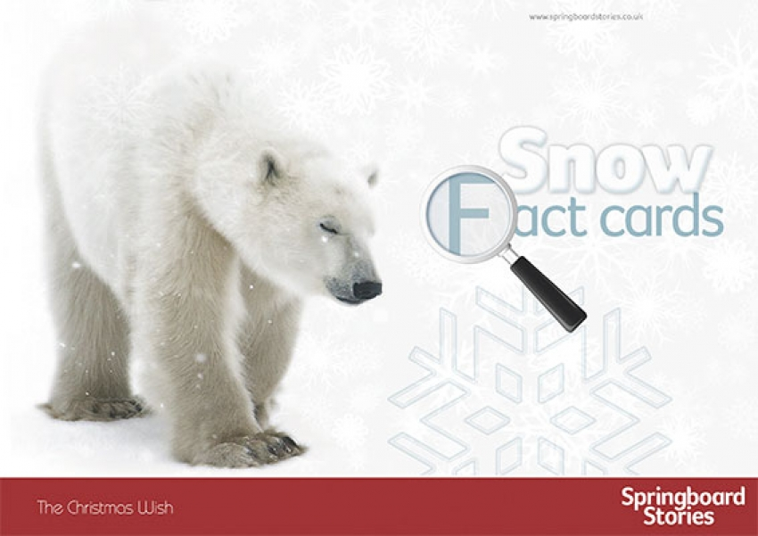 Snow fact cards