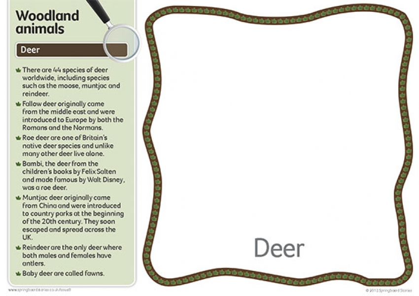 Woodlands fact cards – text