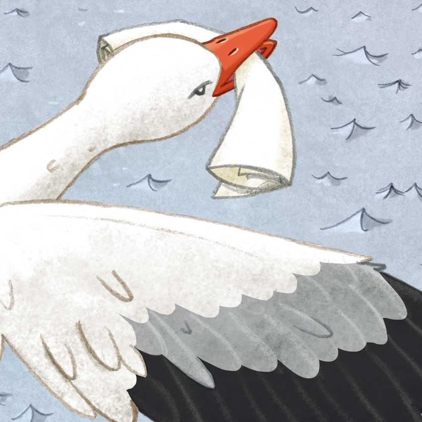 Follow the snowgoose