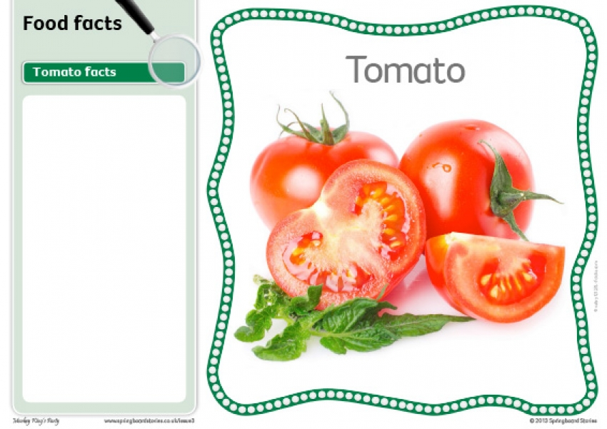 Food fact cards – image only