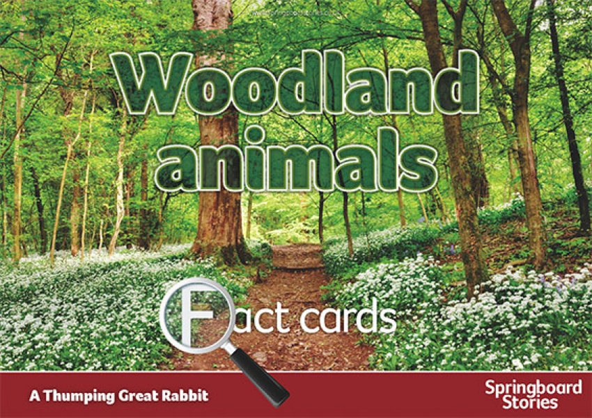 Woodland fact cards